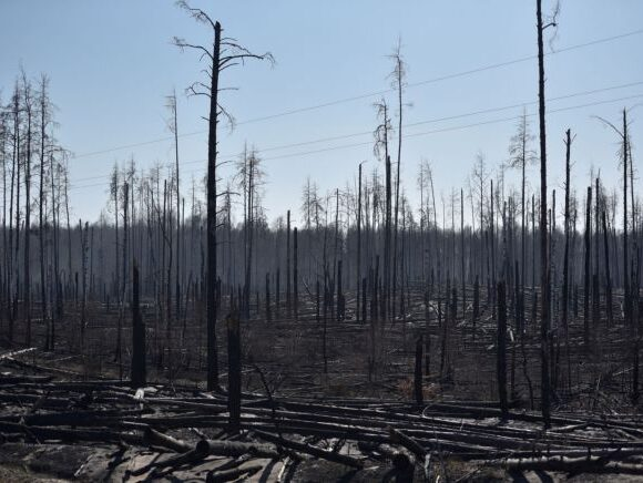 Τσερνόμπιλ : Τι λένε οι ειδικοί για τη φωτιά – Πόσο κινδυνεύει η Ελλάδα