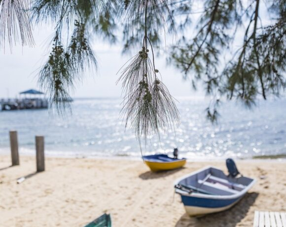 Deutsche Bank Suggests Travel with 'Health Certificate' Could Help Tourism