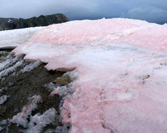 Γιατί βάφτηκαν ροζ ιταλικές Άλπεις; – Αυξάνονται οι φόβοι για την κλιματική αλλαγή
