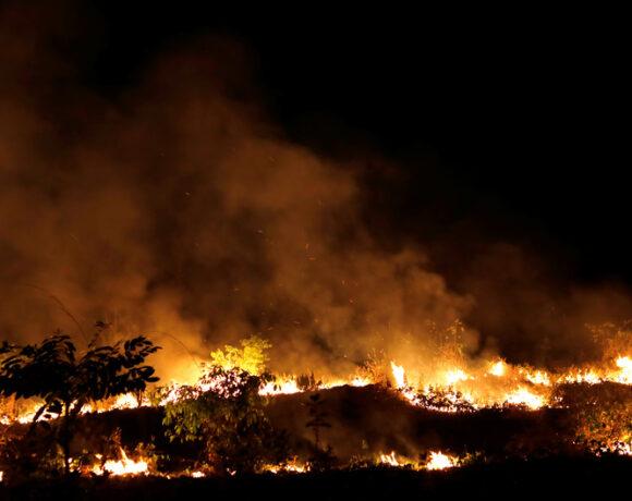 Βραζιλία : Φλέγεται πάλι ο Αμαζόνιος – Ρεκόρ πυρκαγιών στο Παντανάλ