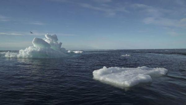 ΟΗΕ – Κλιματική Αλλαγή : Ο πλανήτης δεν έχει πετύχει ούτε έναν από τους στόχους που είχε θέσει για τη σωτηρία του