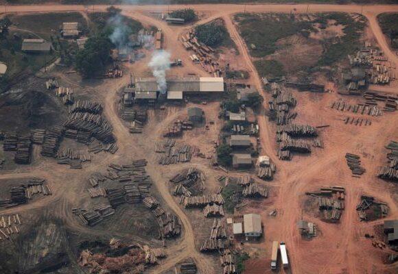 Αγωνία για τον Αμαζόνιο: Κινδυνεύει να μετατραπεί σε λιβάδι