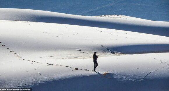 Σαν πίνακας ζωγραφικής οι χιονισμένοι αμμόλοφοι της Σαχάρας