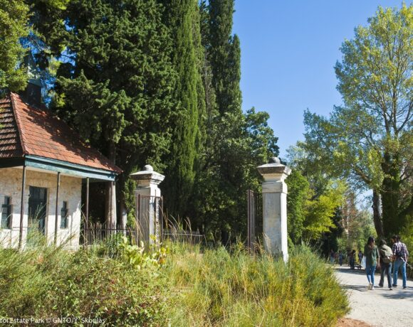 Greece Aiming to Convert Tatoi Estate into Tourism and Culture Hub