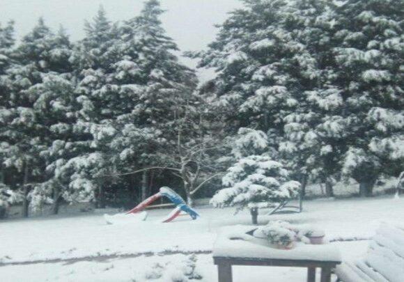 Κακοκαιρία «Μήδεια»: Ισχυρός παγετός σε μεγάλο μέρος της χώρας