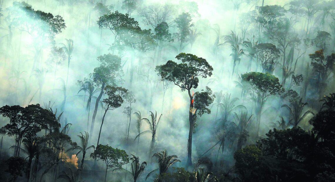 Αμαζόνιος: Τουλάχιστον 10