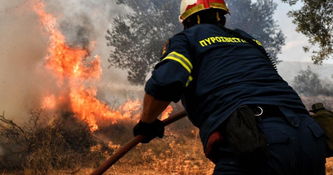 Φωτιά σε δασική έκταση στον Βύρωνα