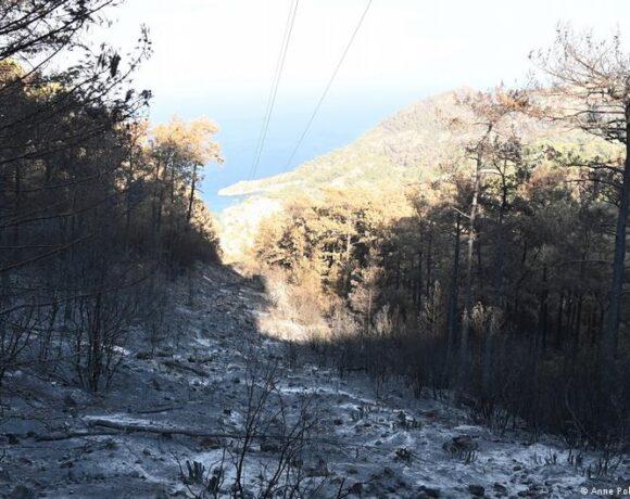 Τουρκία – Ο,τι άφησε όρθιο ο κοροναϊός στον τουρισμό το έκαψαν οι πυρκαγιές