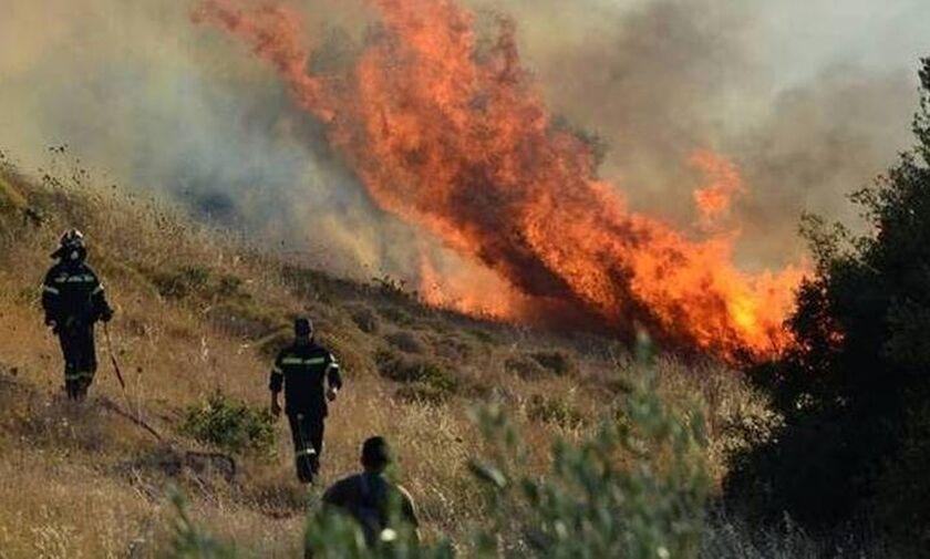 Χωρίς ενεργό μέτωπο η φωτιά στην Κορυφή Ηλείας