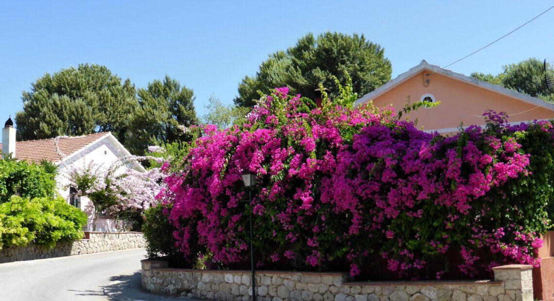 Μπορεί η Εύβοια να γίνει η νέα Κρήτη; 12 αναπτυξιακά projects για ένα τουριστικό restart του νησιού
