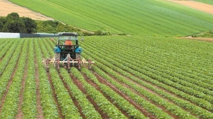 Νέοι αγρότες: Πότε ξεκινά το νέο πρόγραμμα ύψους 450 εκατ