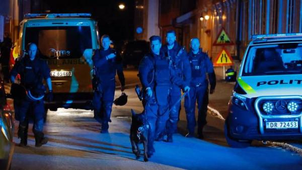 Συναγερμός στη Νορβηγία – Επίθεση με «τόξο και βέλη» – Αρκετοί νεκροί και τραυματίες